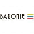 Winkelcentrum de Baronie