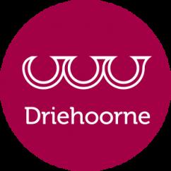 Stichting Driehoorne